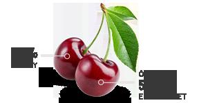 cherry casino historia